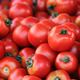 red fresh tomatoes background - PhotoDune Item for Sale