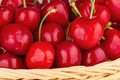 Close up to a red cherries - PhotoDune Item for Sale