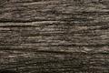 old black wood texture - PhotoDune Item for Sale