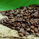 roasted coffee beans - PhotoDune Item for Sale