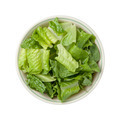 Romaine Lettuce Bowl - PhotoDune Item for Sale