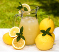 Pitcher With Lemonade - PhotoDune Item for Sale