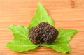 Black truffle - PhotoDune Item for Sale