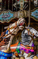 Carousel horse - PhotoDune Item for Sale