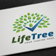 Life Tree Logo - GraphicRiver Item for Sale