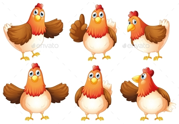 GraphicRiver Six Fat Chickens 9224554