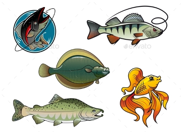 GraphicRiver Salmon Flounder Perch and Goldfish 9225529