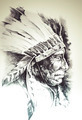 Sketch of tattoo art, native american indian head, chief, isolat - PhotoDune Item for Sale