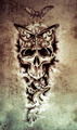Sketch of tattoo art, skull, death concept illustration - PhotoDune Item for Sale