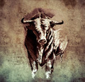 Sketch of tattoo art, spanish bull, dangerous bull with beaked h - PhotoDune Item for Sale