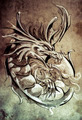 Sketch of tattoo art, medieval dragon, vintage style - PhotoDune Item for Sale