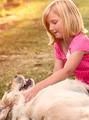 Little girl with golden retriever dog - PhotoDune Item for Sale