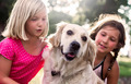 Two little girls with golden retriever dog - PhotoDune Item for Sale