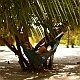 Relaxing on Hammock on the Beach - VideoHive Item for Sale