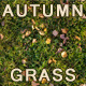 Autumn Grass Texture Tile - 3DOcean Item for Sale