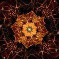 orange fractal flower with violet details on petals, on white - PhotoDune Item for Sale