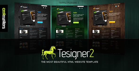 Tesigner - The Most Beautiful Website Template