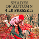 Shades of Autumn - 4 LR Presets - GraphicRiver Item for Sale
