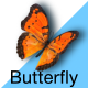 Butterfly - VideoHive Item for Sale