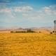 Southern California Farmland - PhotoDune Item for Sale