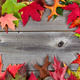 Border of Autumn Leaves on Aged Wood - PhotoDune Item for Sale