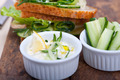 fresh vegetarian sandwich with garlic cheese dip salad - PhotoDune Item for Sale