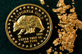 California USA Gold Coin and Natural Nuggets - PhotoDune Item for Sale