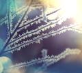 Frozen tree - PhotoDune Item for Sale