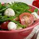 Caprese Salad and bread - PhotoDune Item for Sale