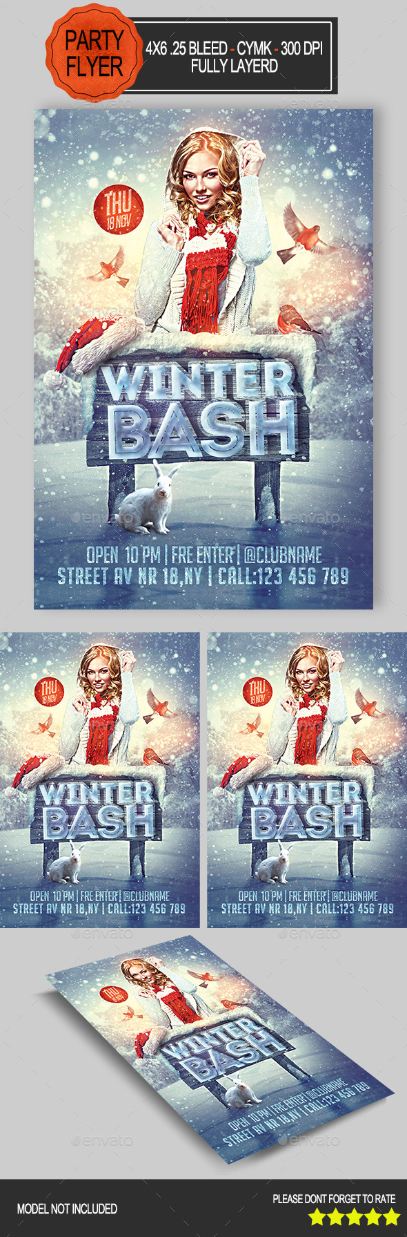 GraphicRiver Winter Bash Party Flyer 9255685