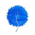 abstract blue winter tree - PhotoDune Item for Sale
