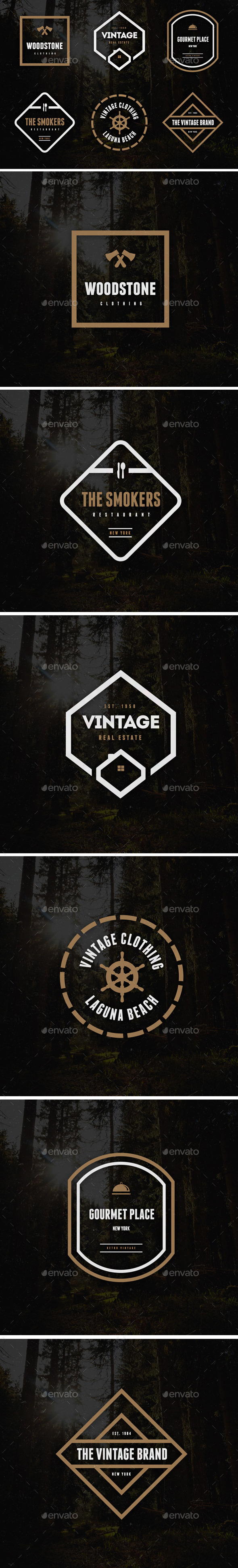GraphicRiver Vintage Labels & Badges Logos V21 9256556