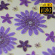 Flower Paper Background - VideoHive Item for Sale
