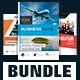 Business Brochure Template Bundle