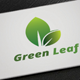 Green Leaf Logo - GraphicRiver Item for Sale