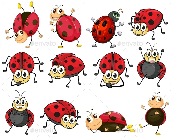 GraphicRiver Ladybugs 9258895