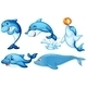 Dolphins - GraphicRiver Item for Sale