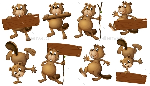 GraphicRiver Beavers with Sign Boards 9259401