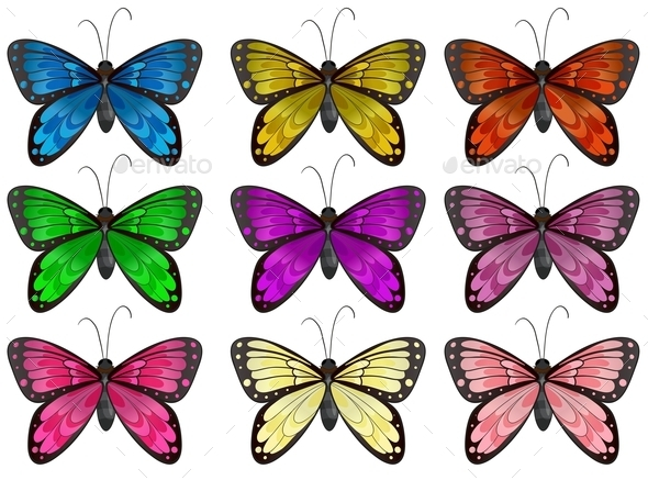 GraphicRiver Butterflies 9259547