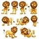 Lions in different Positions - GraphicRiver Item for Sale