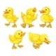 Duckling Chicks - GraphicRiver Item for Sale