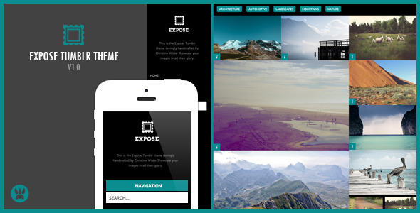 ThemeForest Expose A Responsive Tumblr Theme 9262118