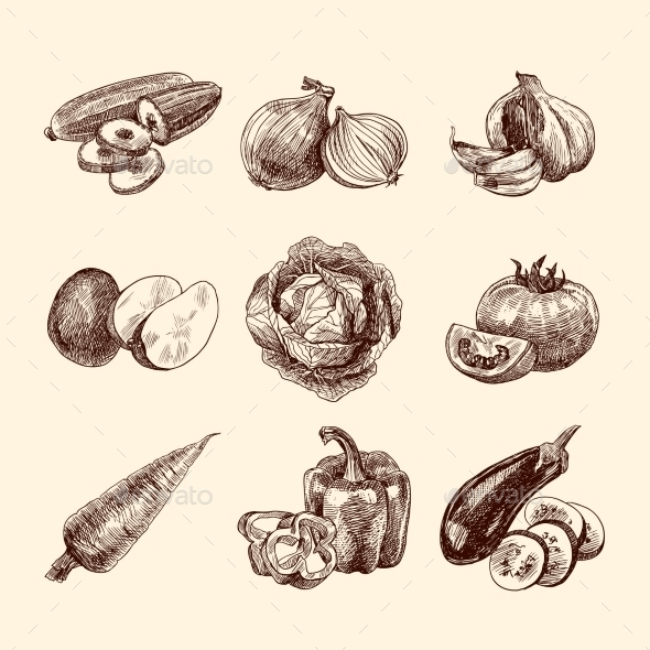 GraphicRiver Vegetables Sketch Set 9263682