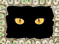Frame from the dollars and cat's eyes in the darkness - PhotoDune Item for Sale
