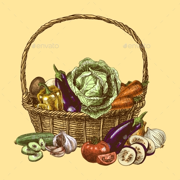 GraphicRiver Vegetables Sketch Color 9264531