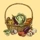 Vegetables Sketch Color - GraphicRiver Item for Sale