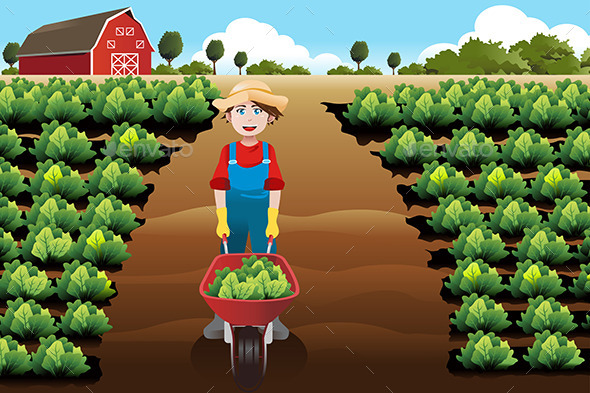 GraphicRiver Boy working in a Vegetable Farm 9269590