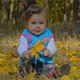 Happy Child Plays With Fall Leaves - VideoHive Item for Sale
