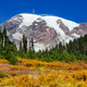 Mt.Rainier - PhotoDune Item for Sale