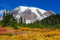 Mt.Rainier - PhotoDune Item for Sale